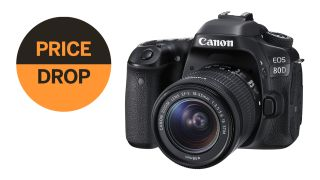 Last minute Black Friday deal: save $350 on Canon EOS 80D with 18-55mm!