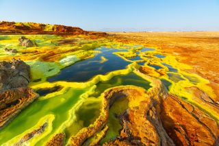 The Dallol hydrothermal pools are harsh environments.