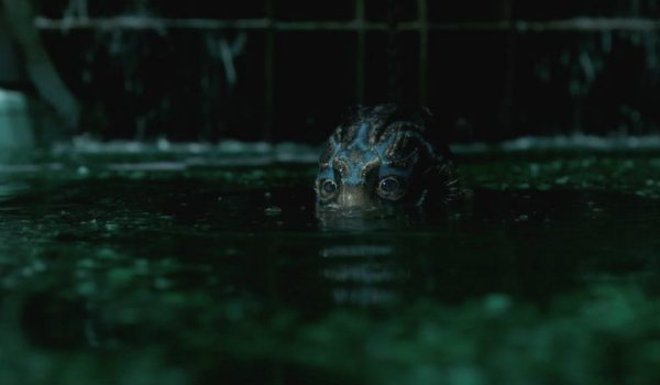 The Shape of Water Doug Jones Creature