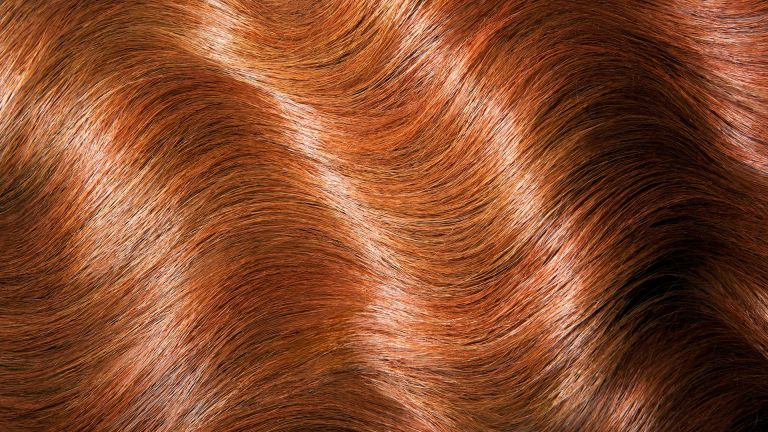 Glossy hair image to depict story for how often should your cut your hair