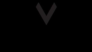 Volumetric Format Association