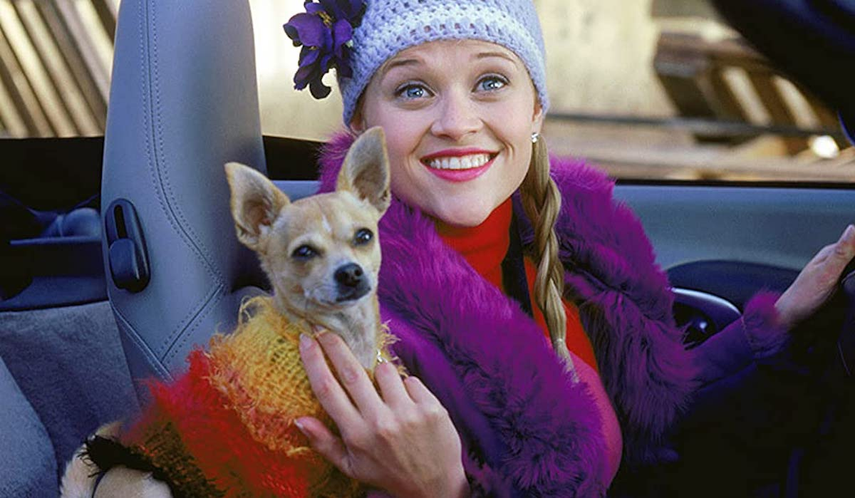 Bruiser and Reese Witherspoon's Elle Woods in Legally Blonde