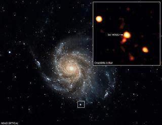 The Surprising End to a Supernova