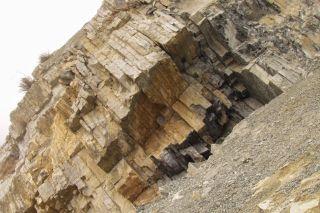 Permian Triassic Boundary