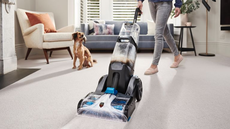 A carpet cleaner rescued me from dog poop on carpet: adorable dog looks on as owner cleans carpet