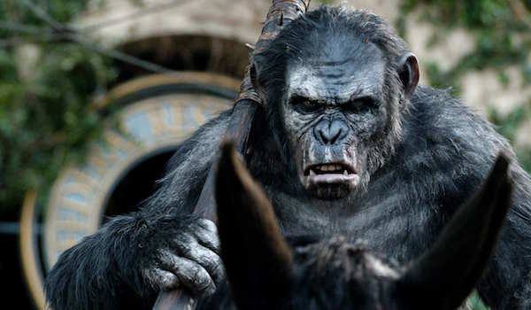 Koba in Dawn of the Planet of the Apes