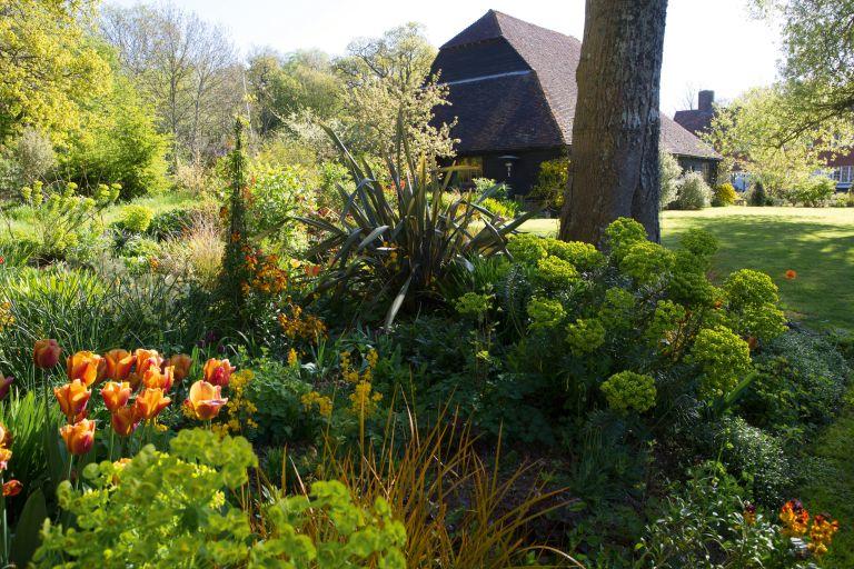 borders in a spring garden