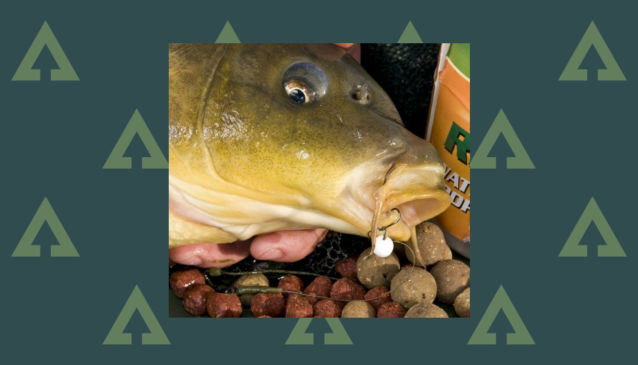 Carp Fishing PVA Bait Bomb Stick Bag Slow Long Melt Boilies Corn Garlic Halibut