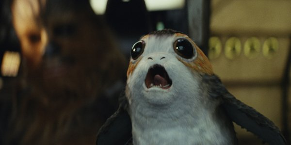 the cutest porg in star wars the last jedi