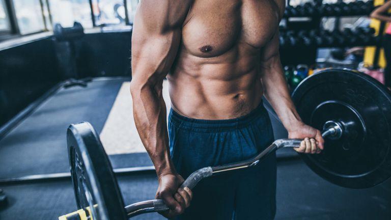 bodybuilder doing EZ bar curl