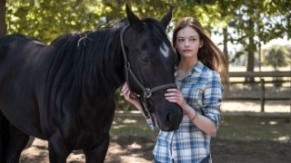 watch black beauty 2020 online