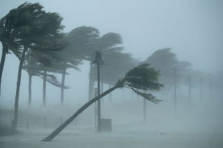 Storm winds from Irma bowed trees along North Fort Lauderdale Beach Boulevard, as Hurricane Irma struck Fort Lauderdale, Florida, on Sept. 10.