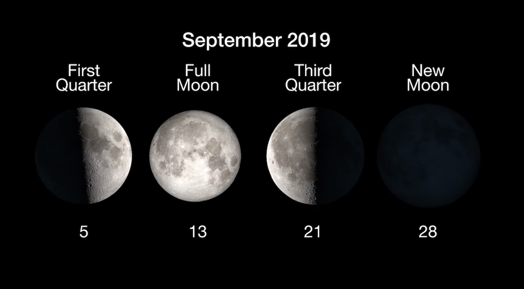 Full Moon Calendar 2019: When to See the Next Full Moon   Space