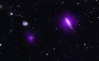 NuSTAR Magenta Black Holes