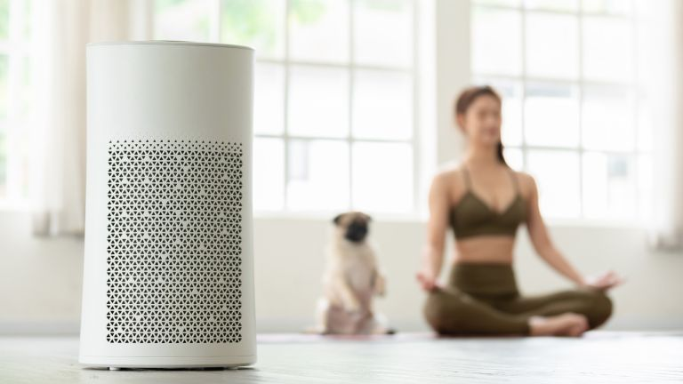 woman doing yoga with her dog in front of air purifier