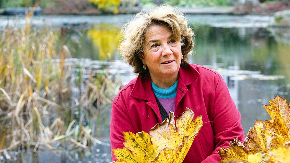 Internationally acclaimed garden designer Arabella Lennox-Boyd's design secrets