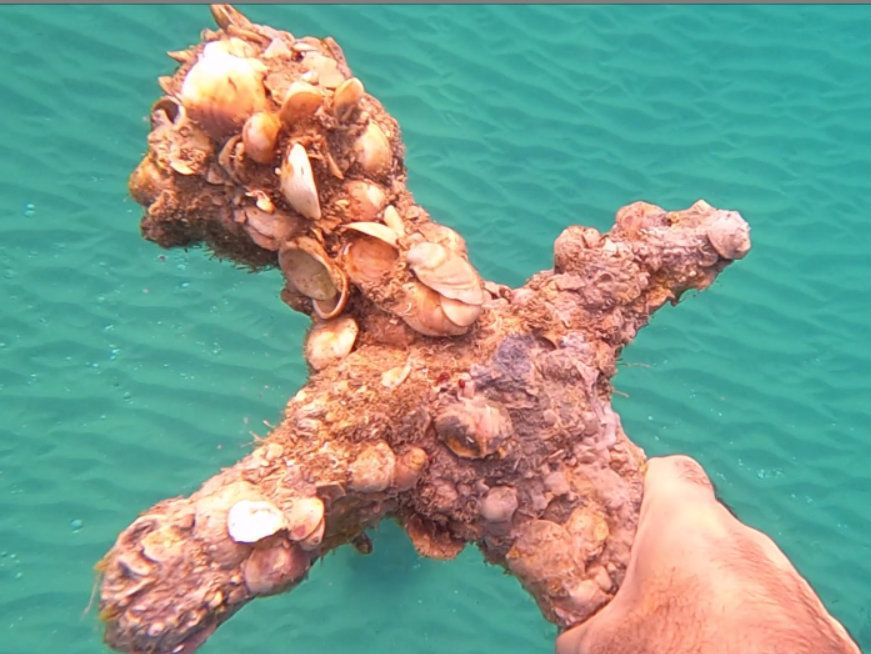 Diver discovers barnacle-encrusted Crusader sword off the coast of Israel