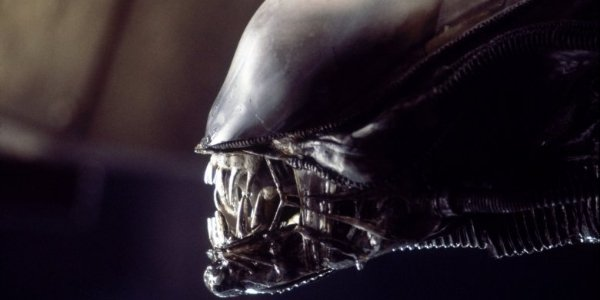 Alien Xenomorph's face up close