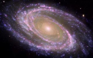M81 Galaxy is Pretty in Pink