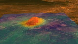 Volcanoes on Venus May be Young and Active