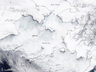 Sea ice chokes the Bering Sea in this NASA satellite image taken on March 19 by NASA's Aqua satellite.