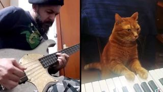 A bassist and a cat