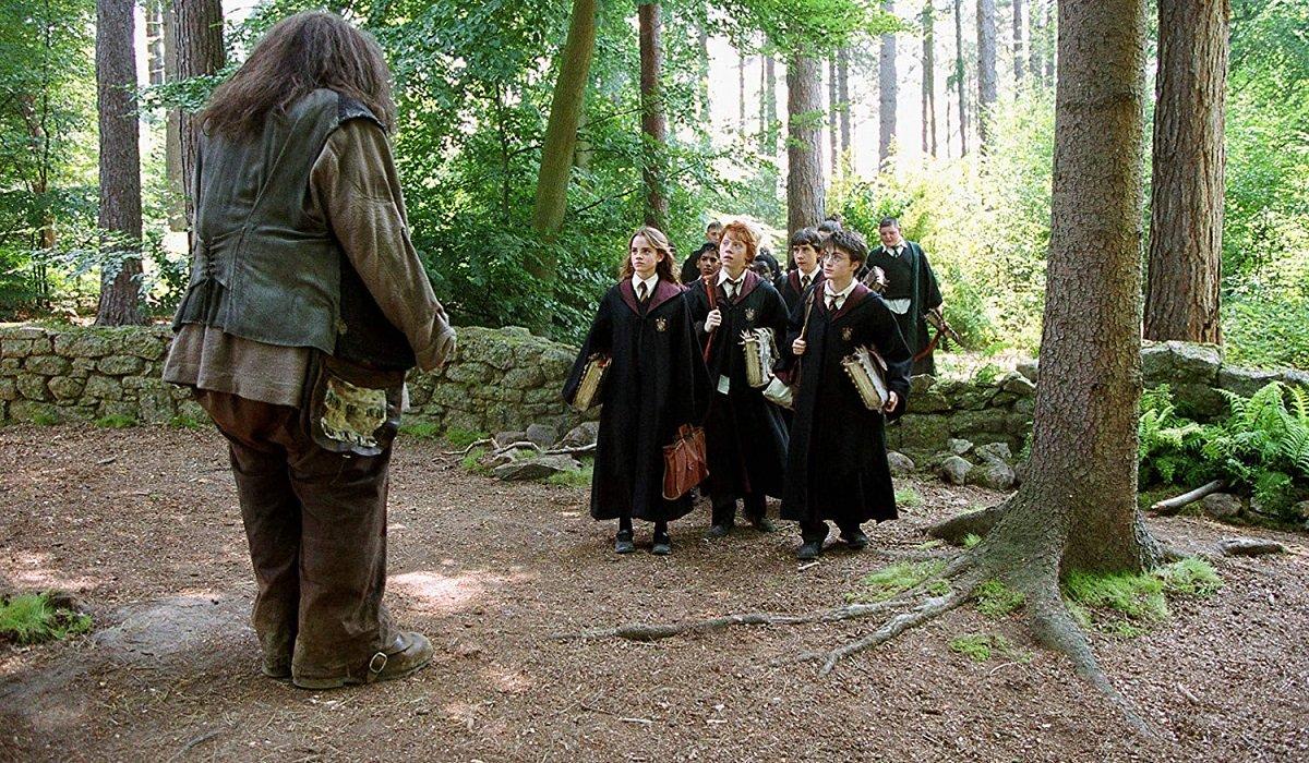Hagrid And Hogwarts Students