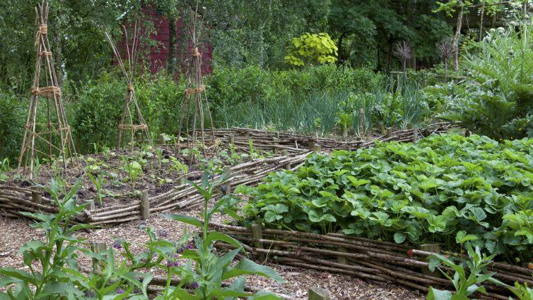 monty don mulching kitchen garden
