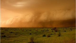 Squall line of a thunderstorm in Mali