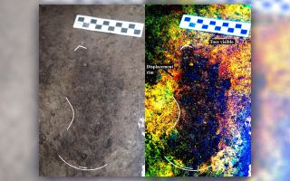 Ice Age Human Footprint