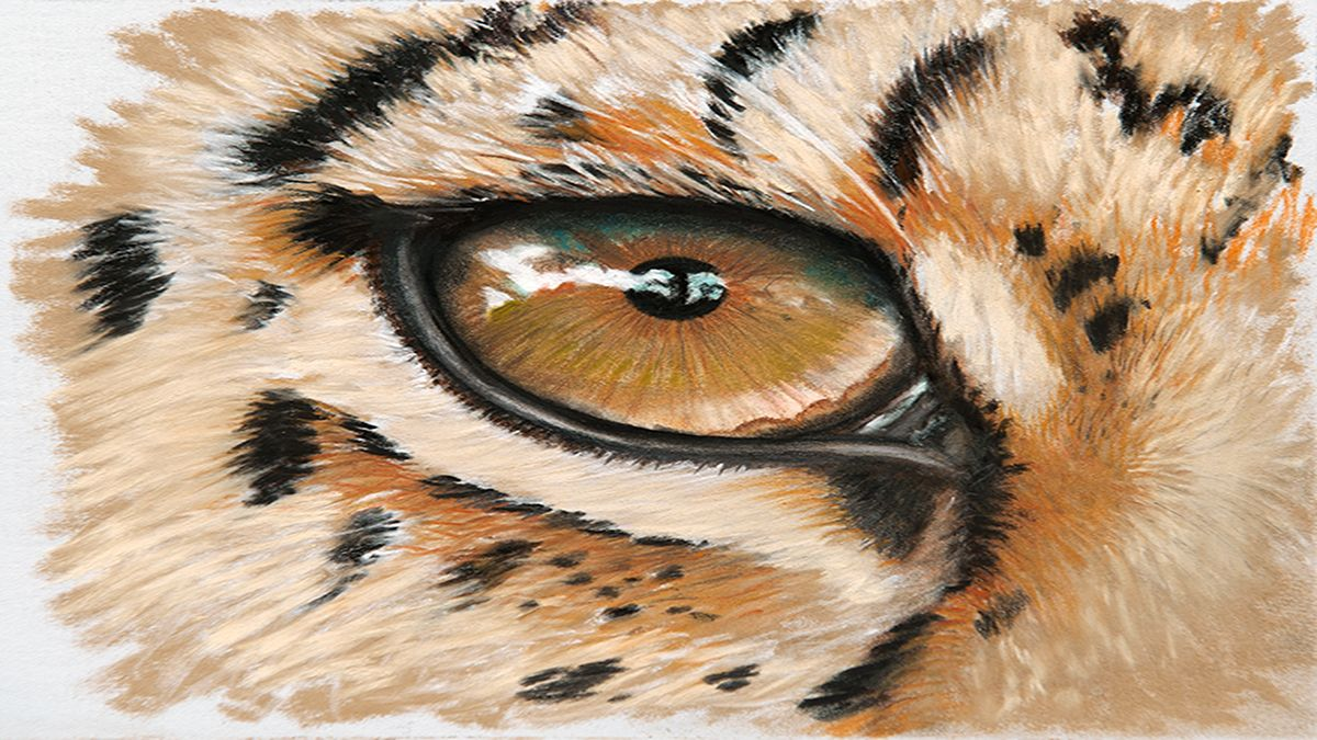How to illustrate animal eyes