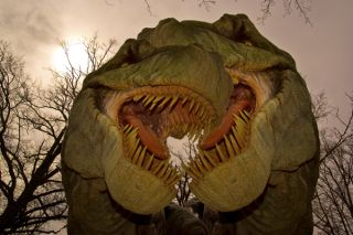 t-rexes-02