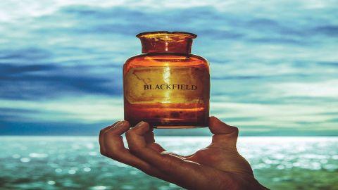 Cover Art for Blackfield - Blackfield V