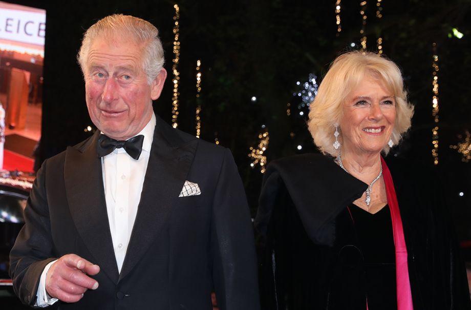 duchess camilla prince charles christmas card 2019