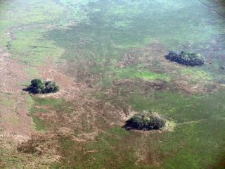 small forested islands in bolivian amazon