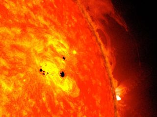 Two Sunspots February 2013