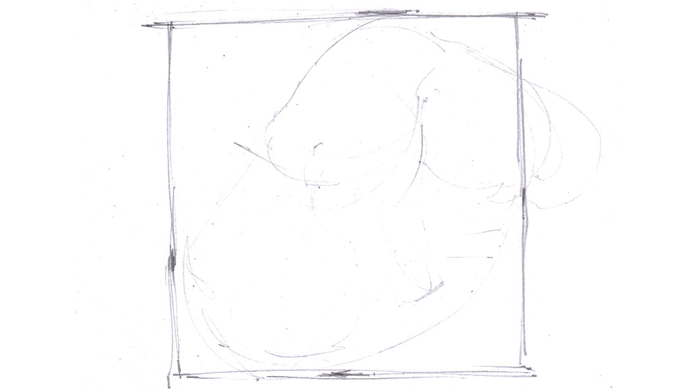 Sketched lines surrounding drawing