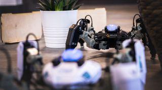 Two MekaMon robots