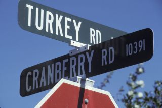 Street signs at the intersection of Turkey Rd. and Cranberry Rd.