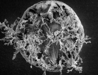 A microscopic look at a grain of salt.