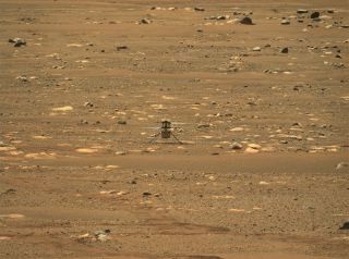 NASA's Mars helicopter Ingenuity took flight for the first time Monday (April 19), with data confirming the flight beaming back down to Earth later that morning. This photograph of Ingenuity the day of its first flight was captured by NASA's Perseverance rover, which carried the helicopter to Mars and released it onto the planet's surface. As Ingenuity makes its 5 total flights, Perseverance will watch from nearby, providing valuable imagery to mission teams back on Earth.