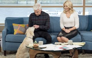 Phillip Schofield and Holly Willoughby on Luna the trainee guide dog: 'Someone's going to be very lucky to have Luna'
