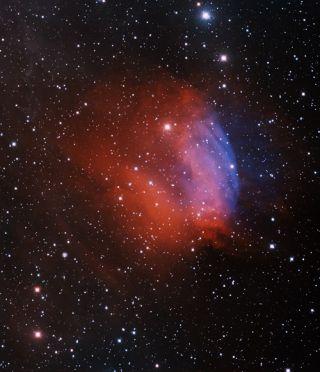 Cosmic Valentine Space Rose