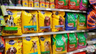 Dog food chewy deals. Supermarket shelf stacked with dog food