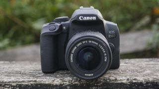 Canon EOS Rebel T8i / Canon EOS 850D