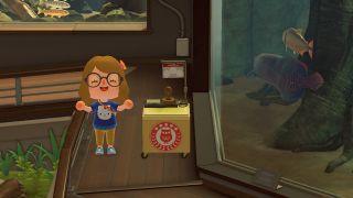 Animal Crossing: New Horizons Museum Day