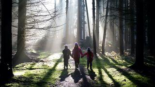 walking through woods