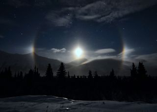Moondogs Illuminate Alaskan Wild Saarloos Night Sky Photo