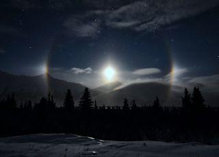 Moondogs Illuminate Alaskan Wild Saarloos Night Sky Photo