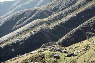Himalayn fault megaquake
